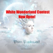 White Wonderland Ticket Giveaway for NYE 2013!